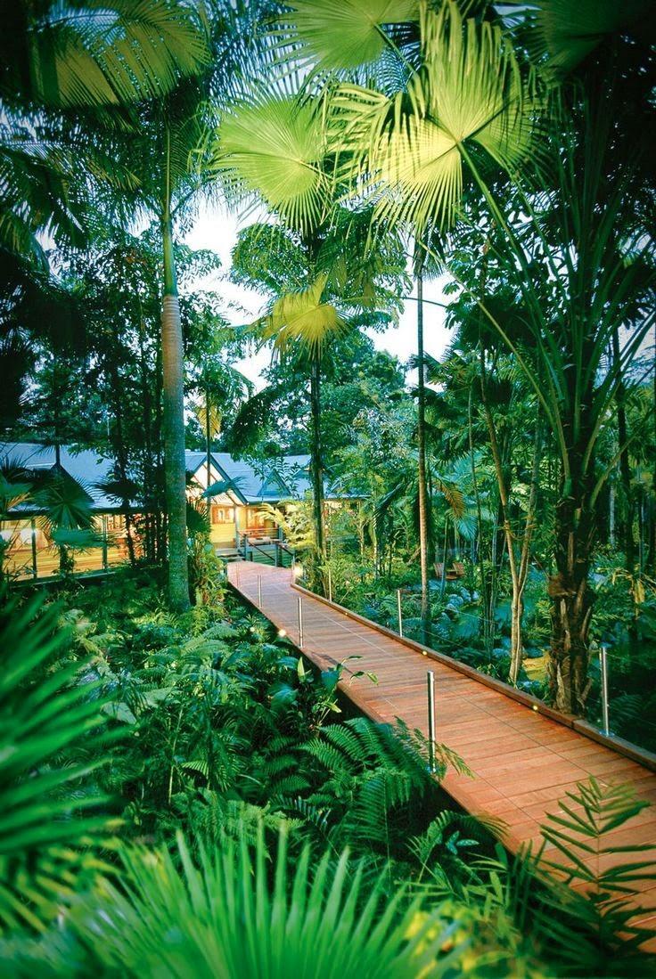Silky Oaks Lodge-Daintree Rainforest, Queensland