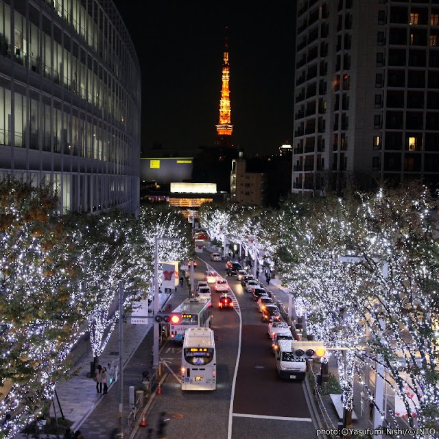 【Artelligent Christmas】六本木之丘的聖誕市集和滿街華麗燈飾