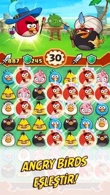 angry birds fight hile apk indir