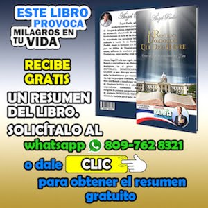 EL LIBRO DE ANGEL PUELLO