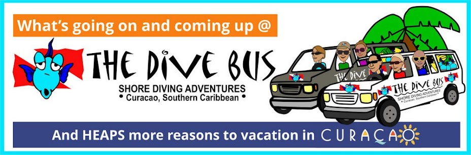 News from The Dive Bus, Curacao