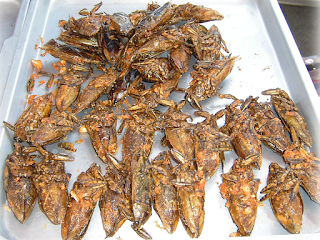5 extrañas comidas del mundo que serían perfectas para Halloween cucarachas