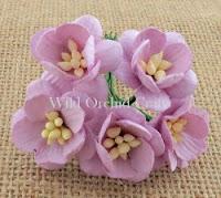 https://scrapkowo.pl/shop,mkx-061-kwiaty-wisni-odcien-liliowy-lilac-5szt-,4842.html