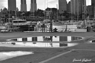Puerto del Buceo. Montevideo. Uruguay