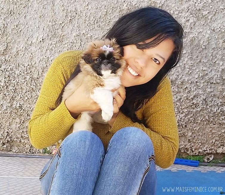 Malu - minha filhote de Shihtzu - Blog Mais Feminice - Djessica Prado