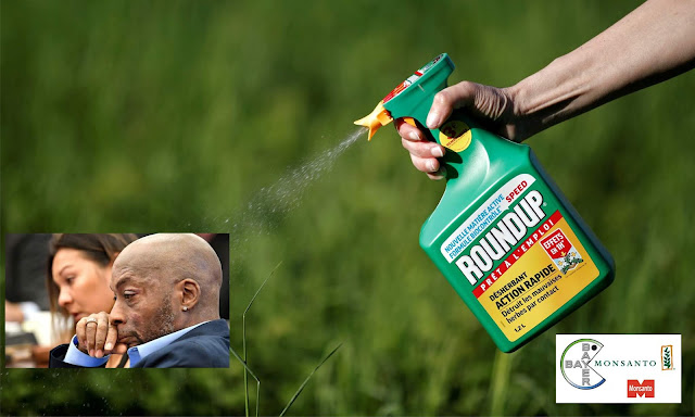 https://www.theguardian.com/business/2018/aug/10/monsanto-trial-cancer-dewayne-johnson-ruling