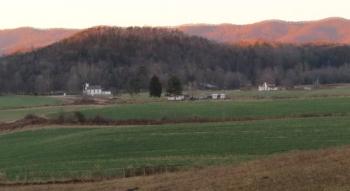 Farm Cluxi