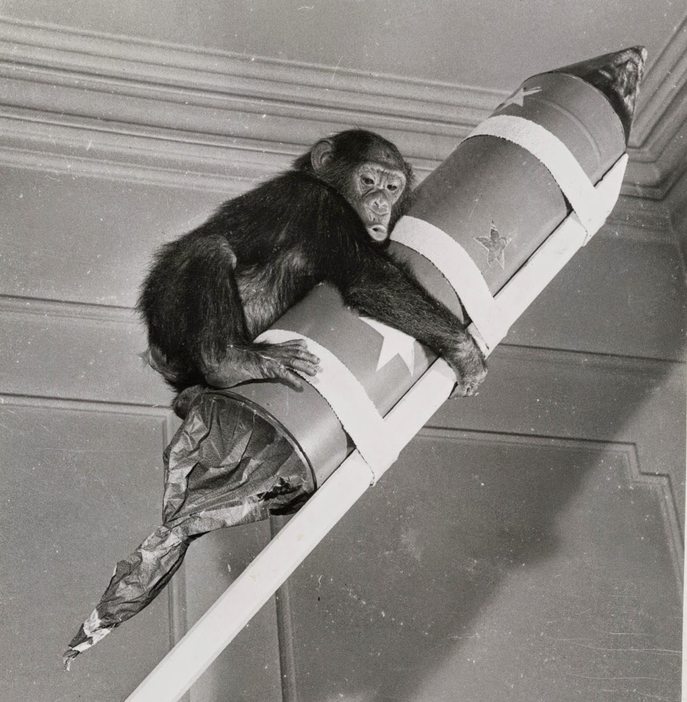Chetham's Library: Space monkey