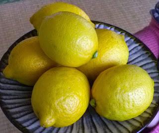 湯河原産レモン