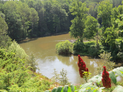 view from the North Country Trail across the Manistee River
