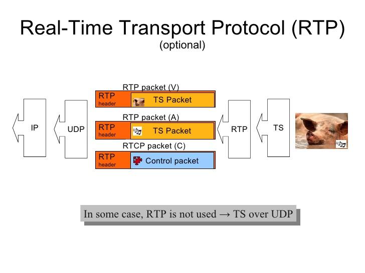 Real Time Protocol - pcfunda.c...