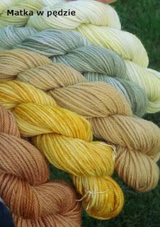ręcznie farbowana wełna