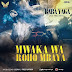 AUDIO | Nay Wa Mitego - Mwaka Wa Roho Mbaya | Download