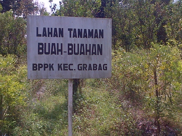 BP3K Kecamatan Grabag: Sarana Prasarana