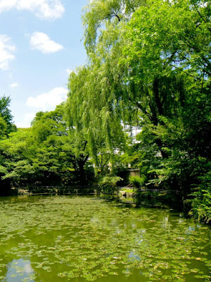 Serene lake at Changdeokgung Palace Seoul