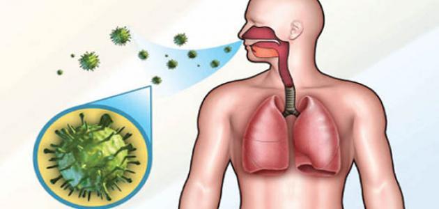 تأثير مرض الزكام على الجسم