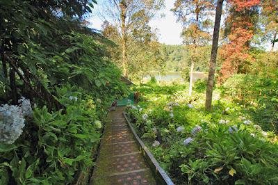 Taman bunga di telaga Warna Dieng