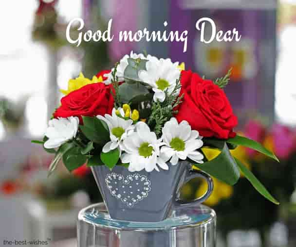 good morning dear get well soon