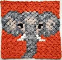 Elephant C2C Square