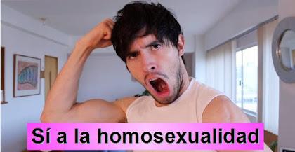 HolaSoyGerman y la homosexuliad