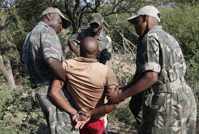 Poaching, poachers, who are they? Poaching is the illegal hunting and capturing of wild animals