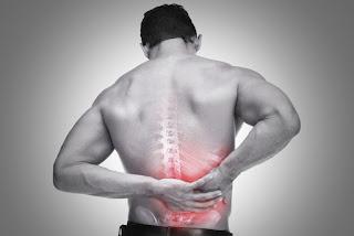 Exercícios para você prevenir dores nas costas, veja!