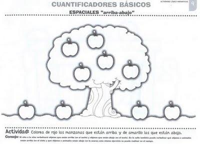Fichas De Matematicas Cuantificadores Básicos Espaciales