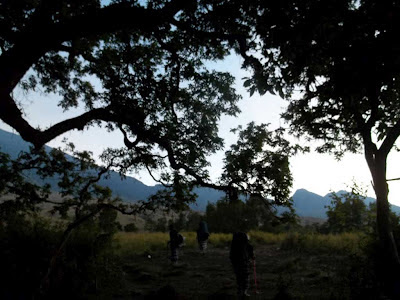 trek hutan rinjani sembalun