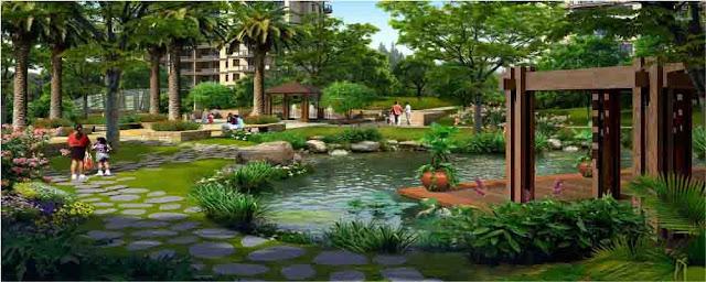 Tiểu cảnh sân vườn tại Louis City
