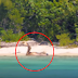 LOOK: Footage Of A Real Life Mermaid Seen In This Island Caught The Attention Of The People!