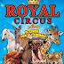 Circo: la magia del tornare bambini!