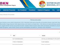 Bermasalah, Pelamar CPNS Harus Upload Ulang Berkas ke Situs sscn.bkn.go.id.. Begini Caranya