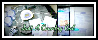Just A Country Gal Lansinoh Double Electric Breast Pump