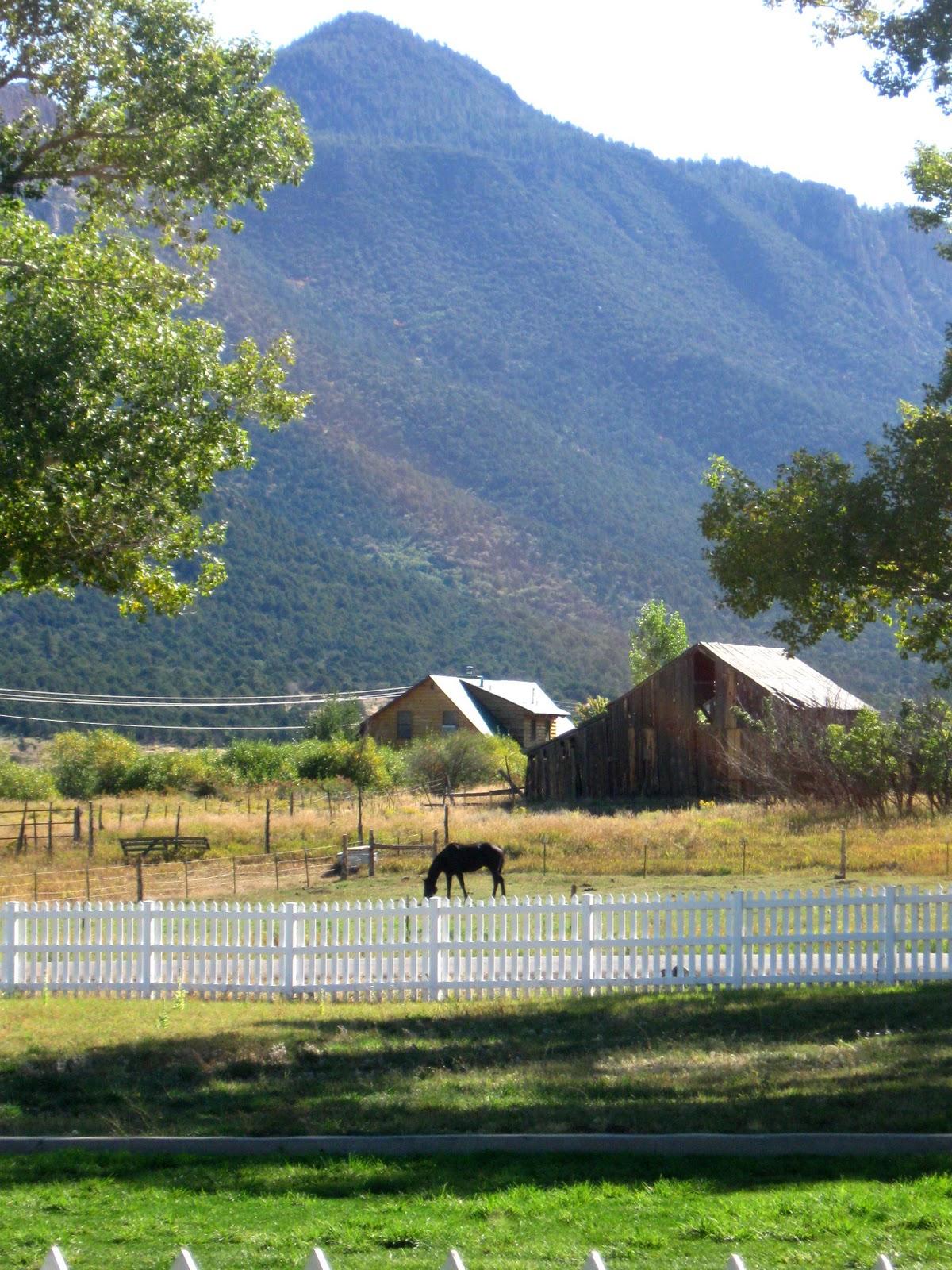 St. George Snapshots: Pine Valley