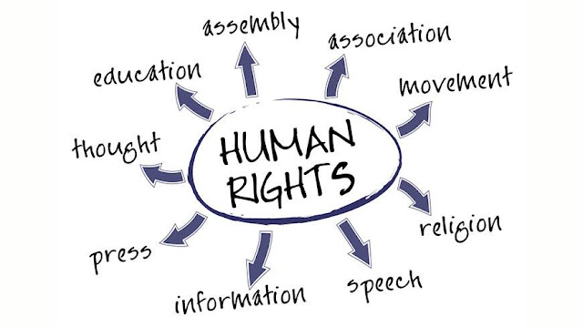 Basic Human Rights