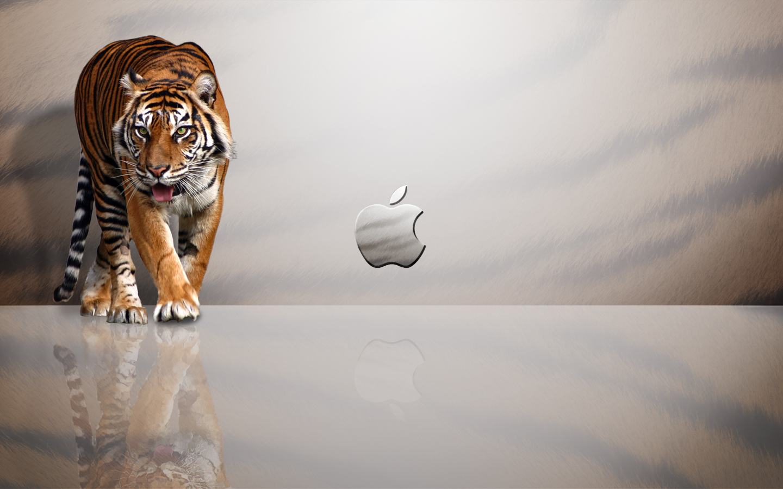 Apple Mac Wallpapers HD | Nice Wallpapers  Apple Mac Wallp...