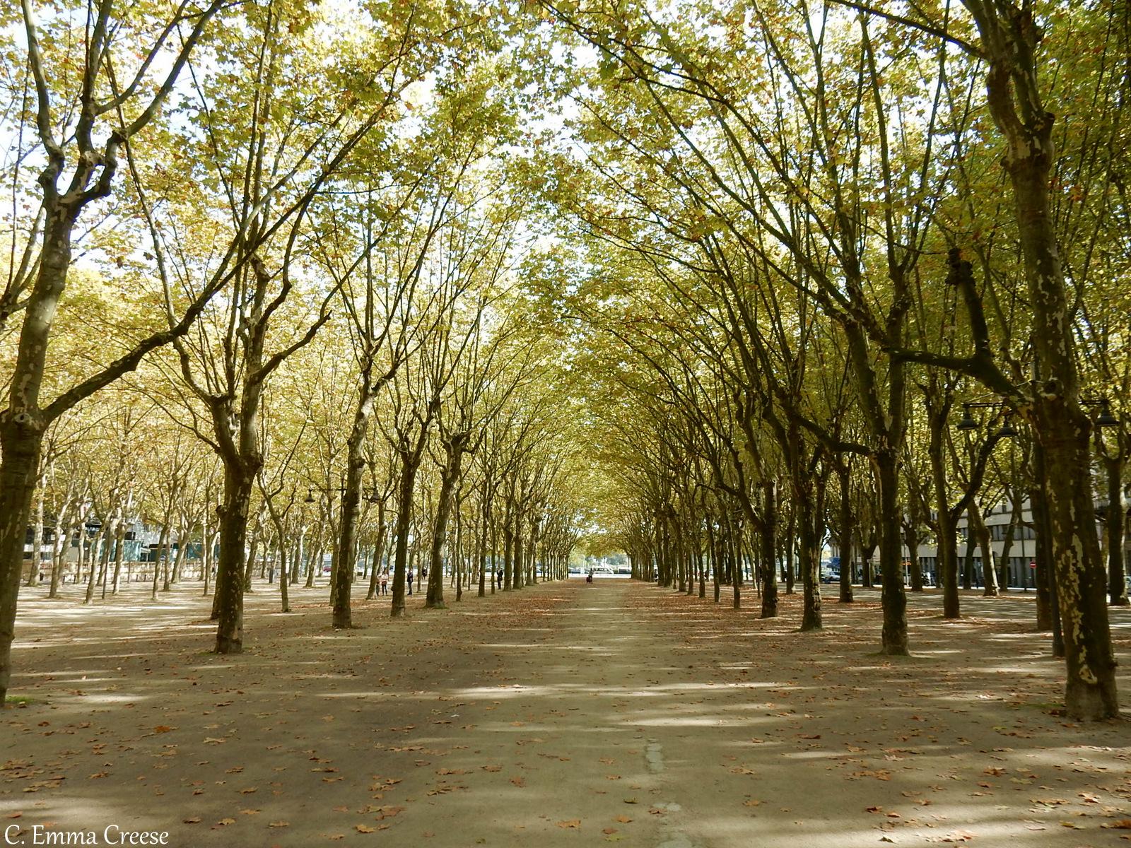City Break Bordeaux France Adventures of a London Kiwi