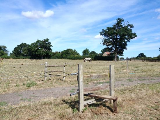 Cross the stiles and head for another stile behind the tree - August 2018  Image by Hertfordshire Walker released under Creative Commons BY-NC-SA 4.0