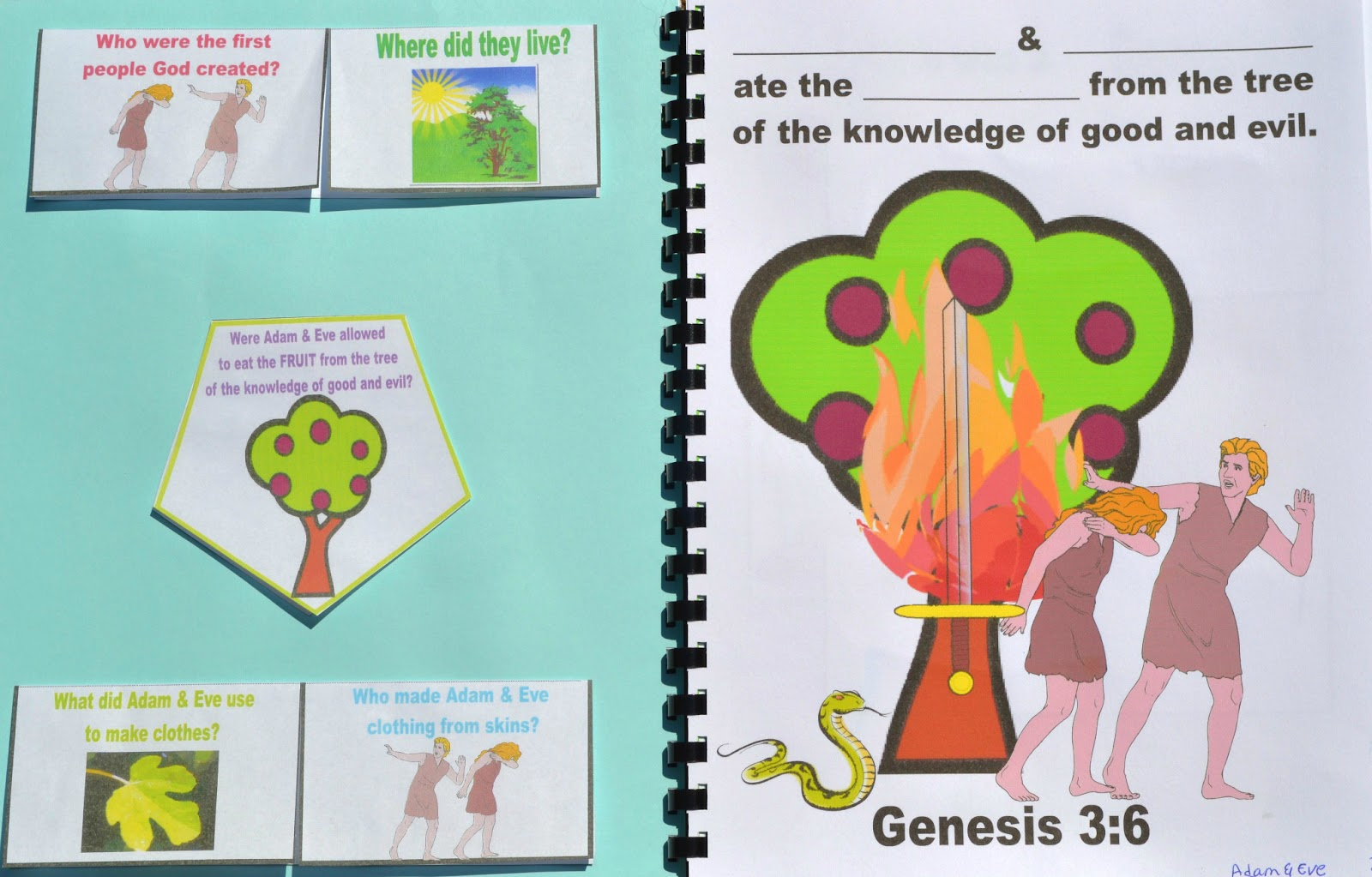Bible Fun For Kids Genesis Lapbook Amp Cut Amp Glue Student Worksheets