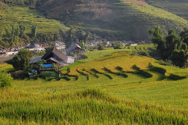The most basic trip for those who first want to travel Sapa
