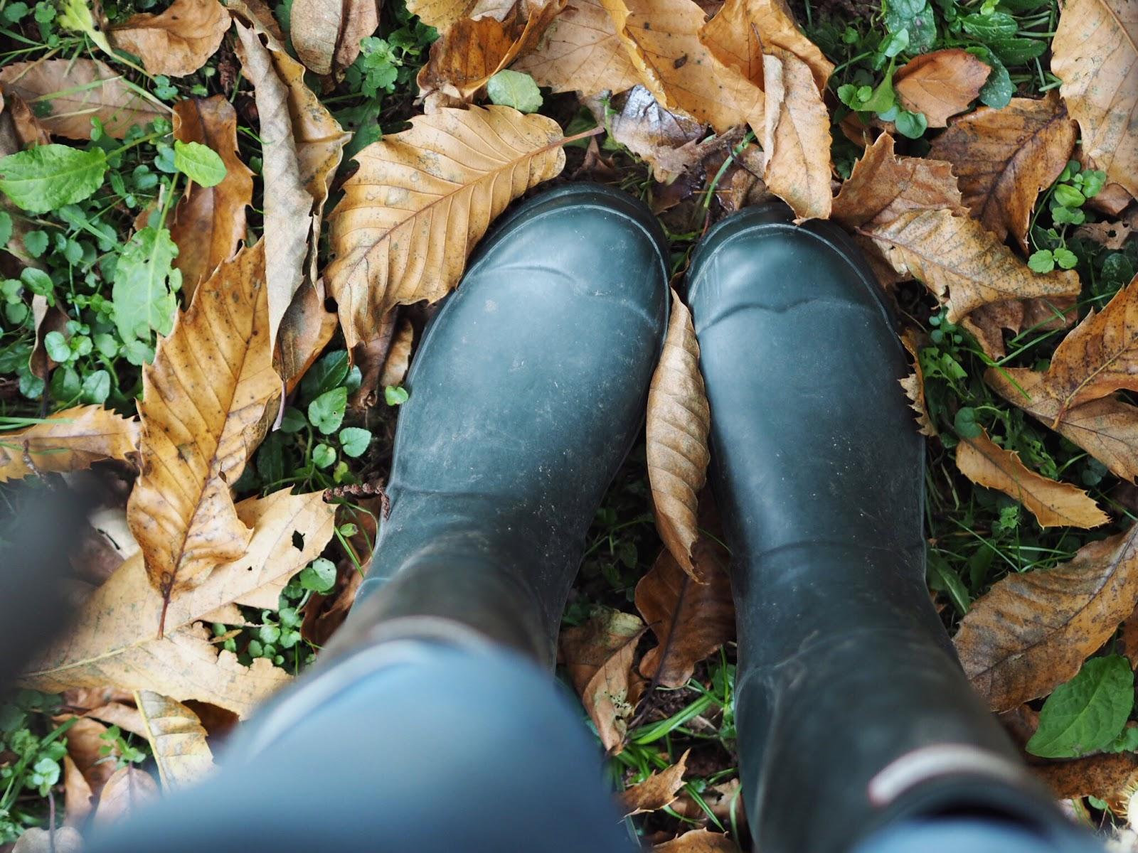 Lifestyle | Autumn Bucket List and Goals Westonbirt Arboretum