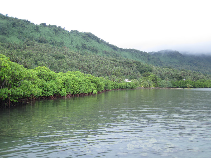 Quotes On Fringing Reefs: Aljure's Kwaj Venture: New Year's Trip To Micronesia's Pohnpei
