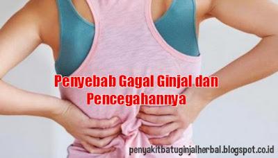 Penyebab Gagal Ginjal dan Pencegahannya