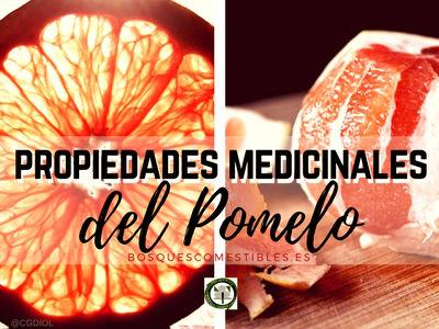 Las propiedades del Pomelo son varias gracias a su contenido en Vitamina C, excelente antioxidante...