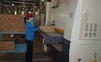 Doanh nghiệp gỗ Bình Dương: Luôn nỗ lực vươn lên