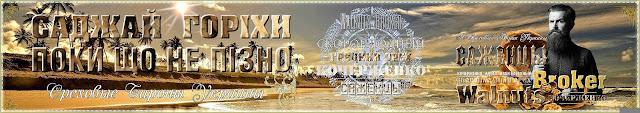 Саженцы ореха кочерженко, 0957351986, 0985674877 - Walnuts Broker