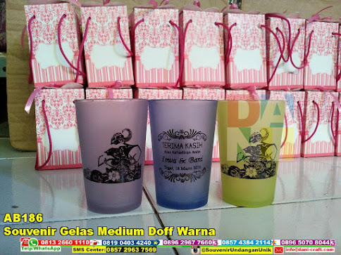 jual Souvenir Gelas Medium Doff Warna