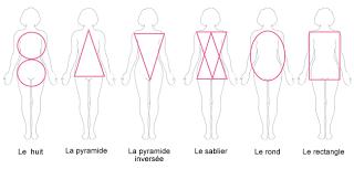 morphologie type