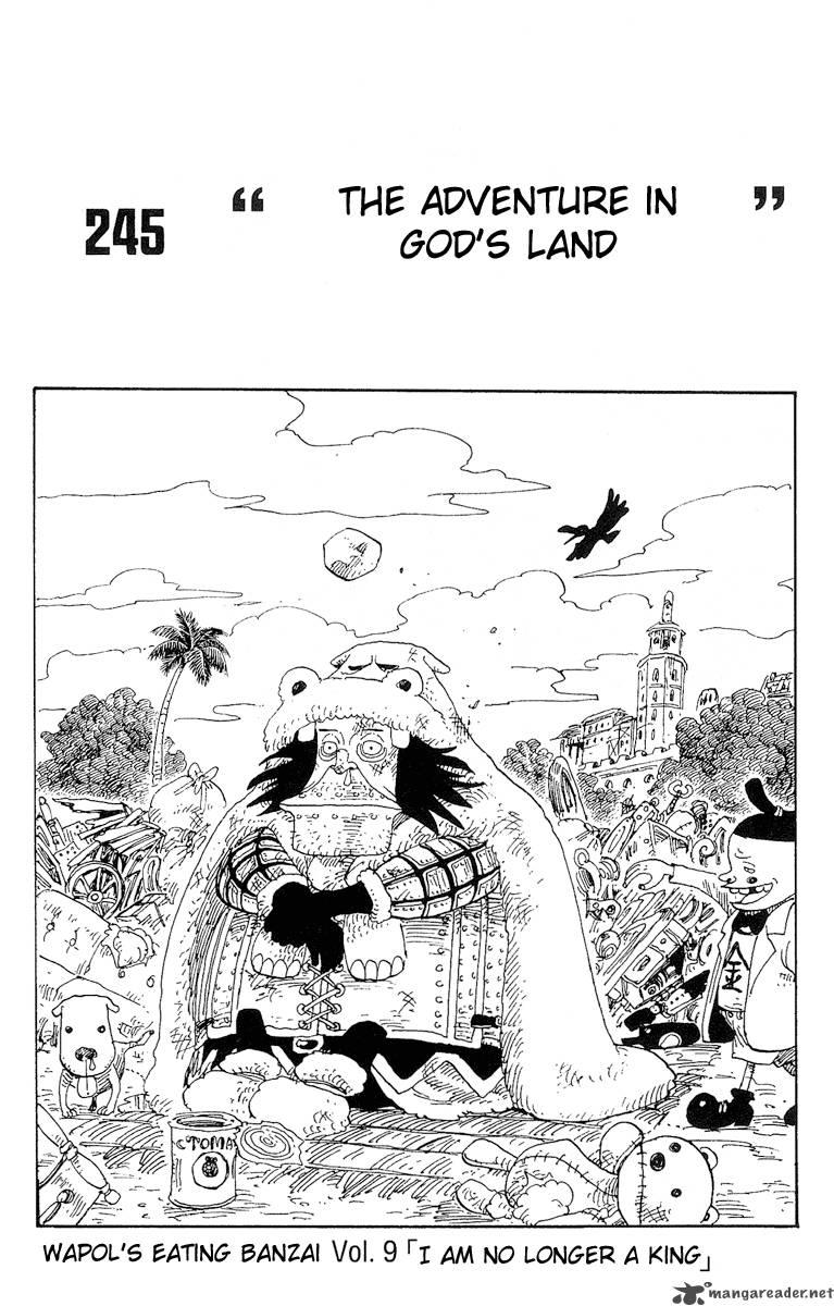 One Piece 245