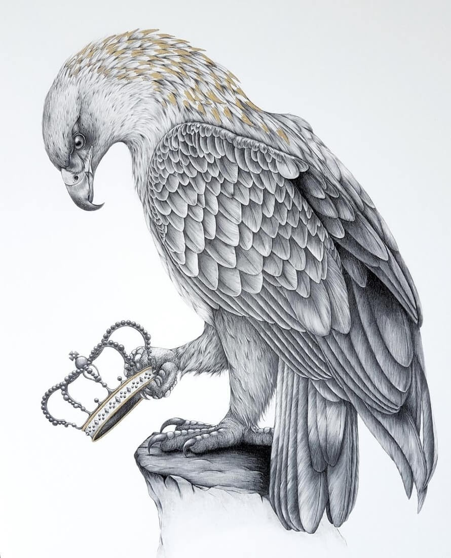 14-Queen-Kerry-Jane-Detailed-Black-and-White-Wildlife-Drawings-www-designstack-co